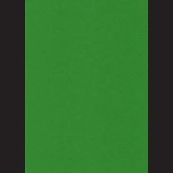 Fotokarton A4 Středně zelená