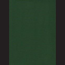 Vlnitá lepenka A4 Tmavě zelená