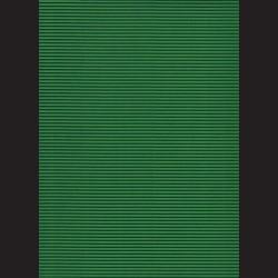 Vlnitá lepenka A4 Trávově zelená