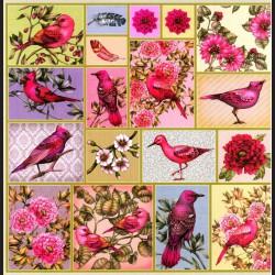 Papír na scrapbook 30,5 x 30,5 cm - Ptáci visačky