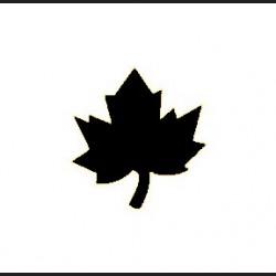 Raznice - javorový list, 2,5 cm