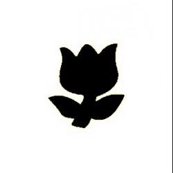 Raznice - tulipán, 1,6 cm