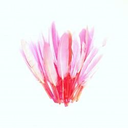 Dekorativní peří, krátké - růžové, 24 ks