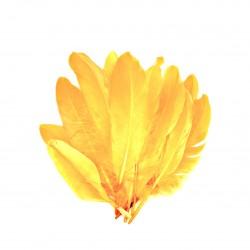 Dekorativní peří, dlouhé - oranžové, 12 ks