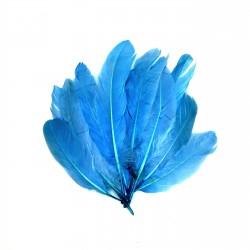 Dekorativní pírka, velká - modrá, 12 ks