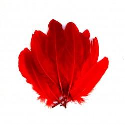 Dekorativní peří, dlouhé - červené, 12 ks