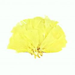 Dekorativní peří, vějíř - žluté, 48 ks