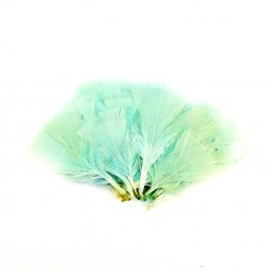 Dekorativní peří, vějíř - mintové, 48 ks