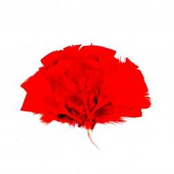 Dekorativní peří, vějíř - červené, 48 ks