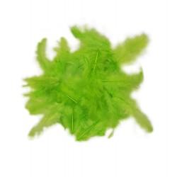 Dekorativní peří - světle zelené, 10 g