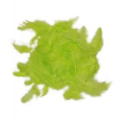 Dekorativní peří - limetkové, 10 g