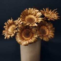 Podzimní dekorace - sušená květina