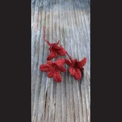 Květ zápich - vánoční hvězda červená glitrová
