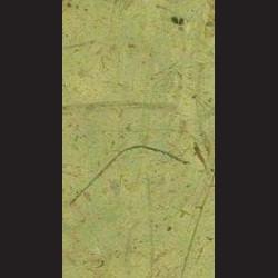 Morušový papír banán tmavě zelený
