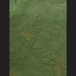 Morušový papír mango tmavě zelený