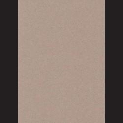 Canson, Mi- Teintes  A4 Gris clair