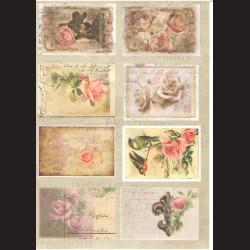 Karton - Růže