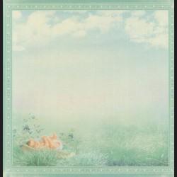 Papír na scrapbook 30,5 x 30,5 cm - Baby & Bluebells